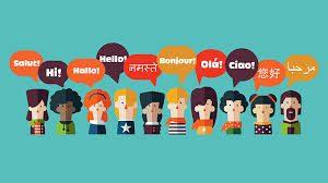 Ling Fluent 500 - Inhaltsstoffe - Nebenwirkungen - Unterricht