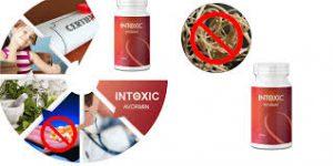 Intoxic - anwendung - Funktioniert es? - bestellen