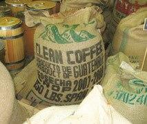 Green Coffee for Swiss - Aktion - erfahrungen - in apotheke
